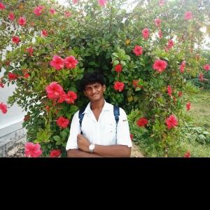 Santhosh Sandy