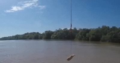 Crocodile Jump