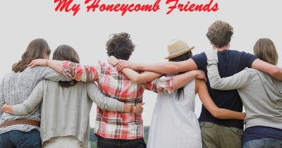 My Honeycomb Friends