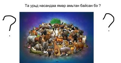 Та урьд насандаа ямар амьтан байсан бэ ?