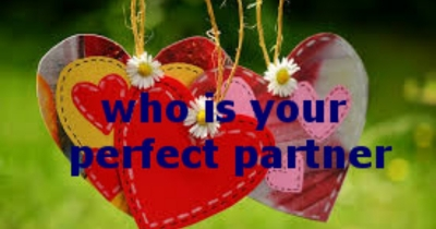 who is your perfect partner